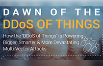 A10 Networks warns about the DDoS of Things