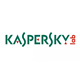 Kaspersky Lab survey shows real business loss from cyber-attacks