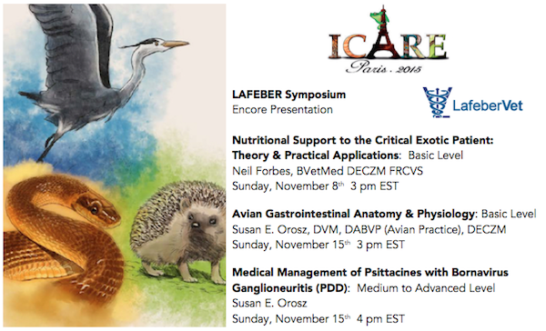 Lafeber Symposium cropped