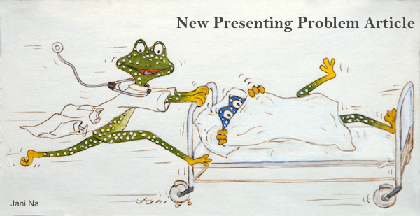 Frog Doctor Watercolor and Ink Jani Na FCC