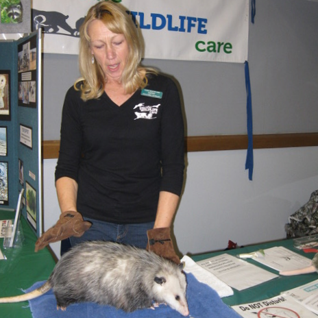 kathy dunca with opossum