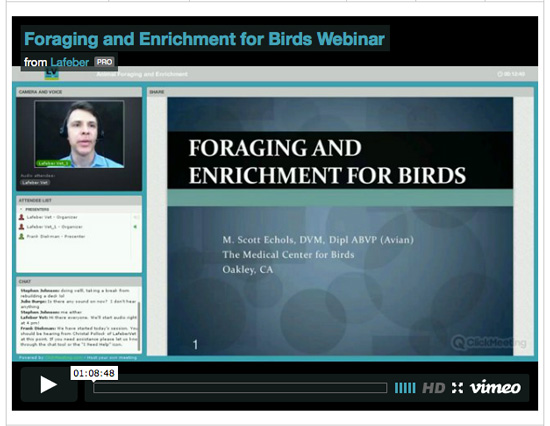 Foraging and Enrichment webinar screenshot