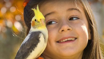 Girl and cockatiel