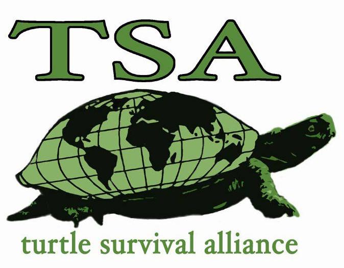 TSA color logo