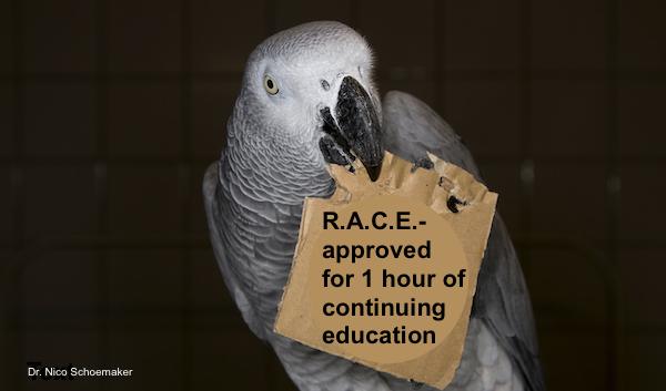 race credit header