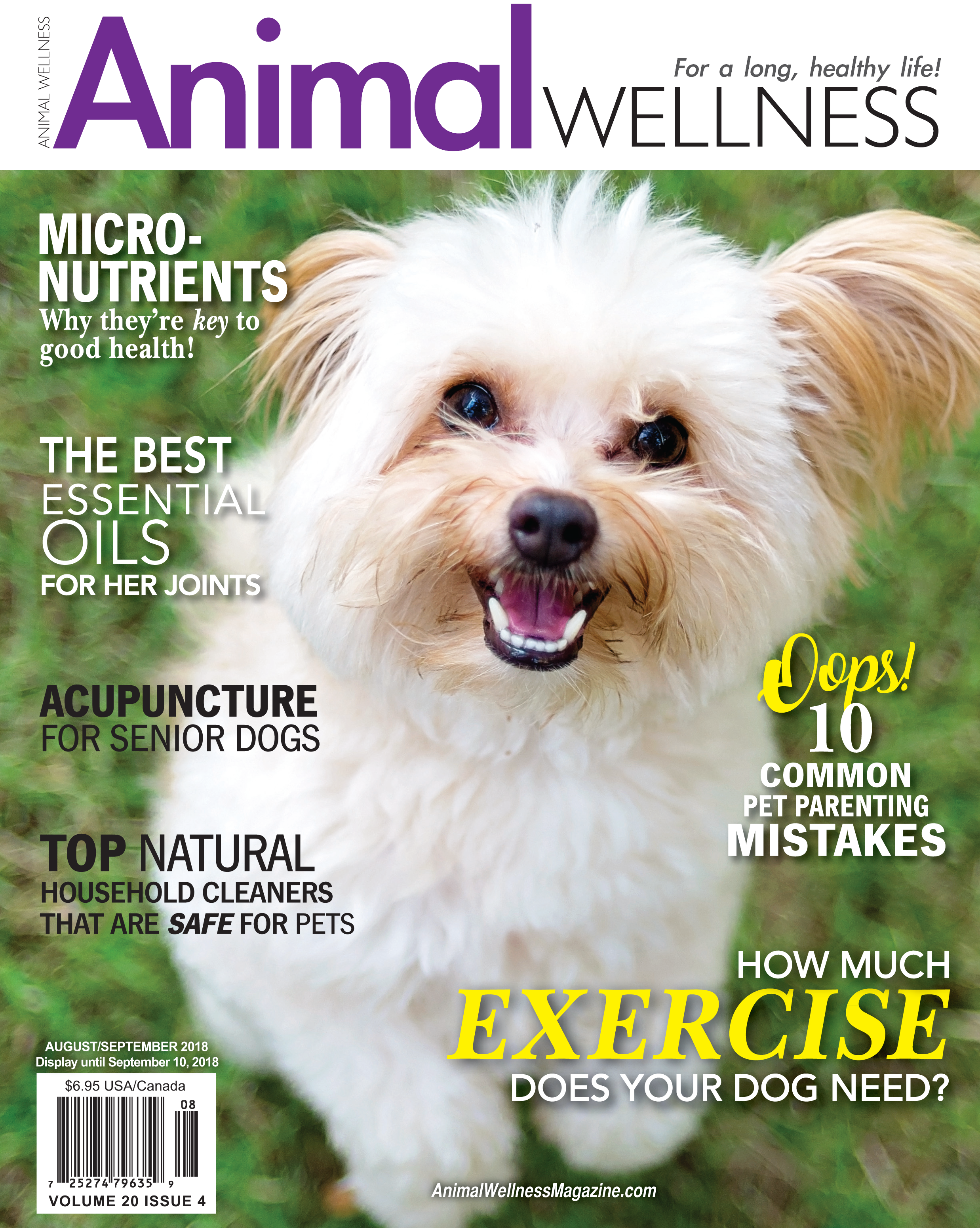 Giving your dog affection the right way | Animal Wellness