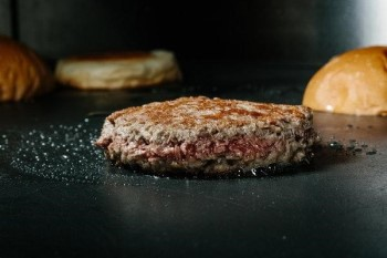 hamburger2.jpg